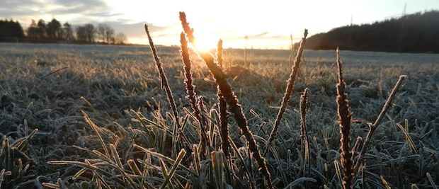 winter_2015